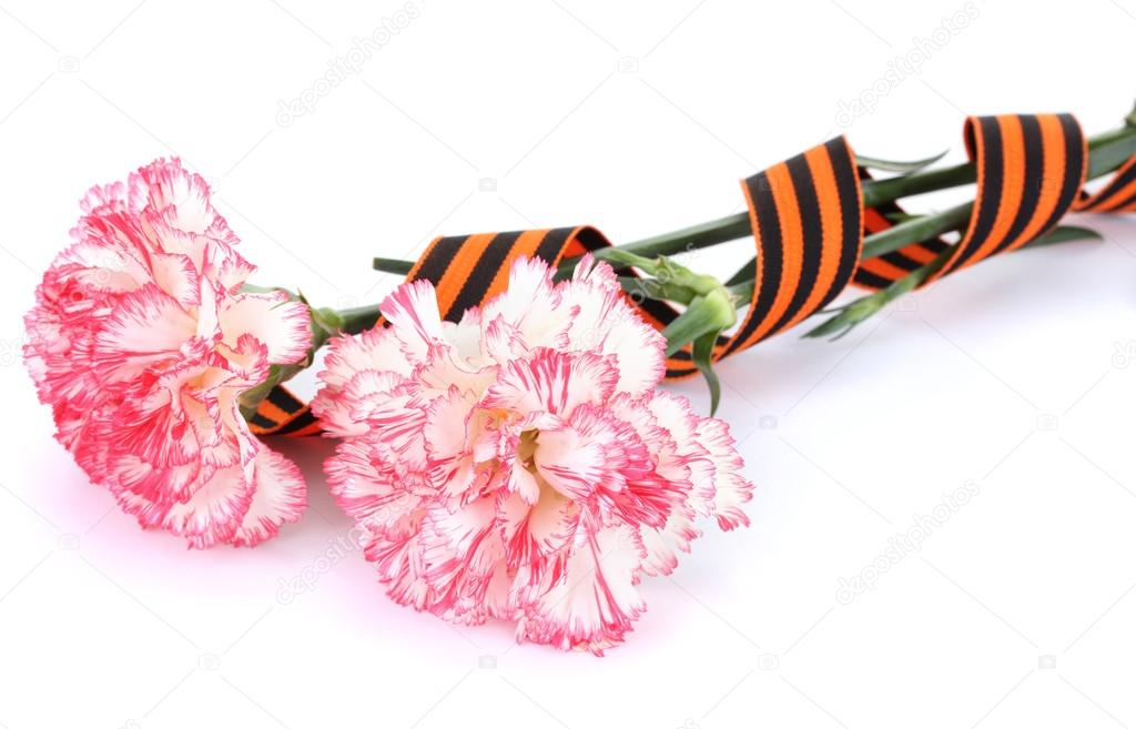 /Files/image/depositphotos_13351230-stock-photo-carnations-and-st-georges-ribbon.jpg